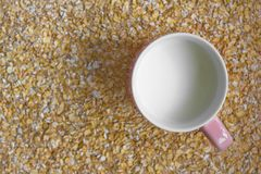 Latte e muesli Fotografia Stock