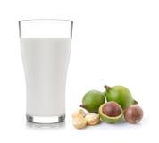 Latte e noci di macadamia Fotografia Stock Libera da Diritti