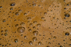 Latte evaporato per caffè Fotografia Stock