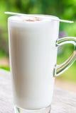 Latte fresco Immagine Stock