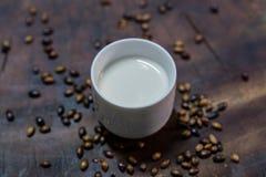 Latte fresco Immagini Stock Libere da Diritti