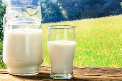 Latte fresco su un prato Fotografie Stock Libere da Diritti
