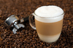 Latte Macchiato. With porta filter on coffee beans Stock Photos