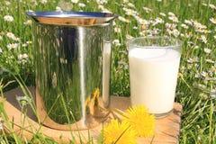 Latte naturale fotografia stock libera da diritti