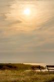 Latte-Sonnenuntergang Stockfoto