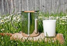 latte su erba immagine stock