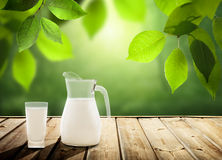 Latte sulla tavola e sugli alberi soleggiati fotografie stock libere da diritti