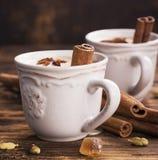 Latte tradizionale di masala del tè con le spezie Immagini Stock Libere da Diritti