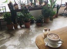 Latte w późnym popołudniu Zdjęcie Stock