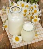 Latte, yogurt e camomilla immagine stock