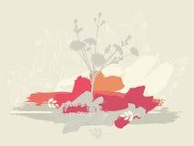 Lattengänseblümchen Stockfotos
