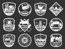 Latteria dell'azienda agricola e bestiame carne o icone dei prodotti dei gallinacei royalty illustrazione gratis