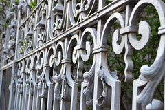 Lattice fences, St. Petersburg Royalty Free Stock Photo