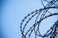 Lattice in prison Royalty Free Stock Image