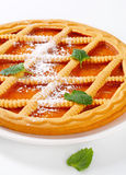 Lattice topped apricot crostata Stock Images