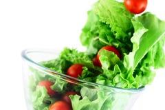 Lattuga chiara e pomodori che pilotano concetto dell'insalata Immagini Stock Libere da Diritti