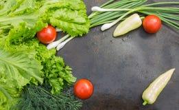 Lattuga con aneto, prezzemolo, i pomodori ed il primo piano delle cipolle verdi Immagini Stock Libere da Diritti
