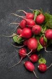 Lattuga del ravanello del raccolto, agricoltura, mazzo rosso fotografia stock libera da diritti