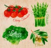 Lattuga dell'acquerello delle verdure, pomodori ciliegia, Fotografia Stock