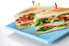 Lattuga della pancetta affumicata e panino del pomodoro Fotografie Stock