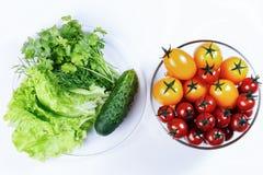 Lattuga, pomodori, prezzemolo, aneto, cetriolo Fotografia Stock
