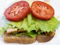Lattuga, pomodoro, panino di pollo su grano intero fotografia stock