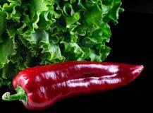 Lattuga verde e paprica dolce rossa Fotografie Stock Libere da Diritti