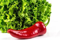 Lattuga verde e paprica rossa dolce Immagini Stock Libere da Diritti