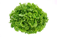 Lattuga verde fresca su una priorità bassa bianca Fotografie Stock
