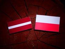 Latvia flag with Polish flag on a tree stump isolated. Latvia flag with Polish flag on a tree stump royalty free illustration