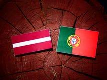 Latvia flag with Portuguese flag on a tree stump isolated. Latvia flag with Portuguese flag on a tree stump vector illustration