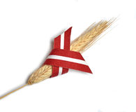 Latvia flag ribbon and wheat Stock Image