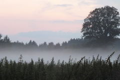 Latvia Lubana odpowiada słońce set Zdjęcia Stock