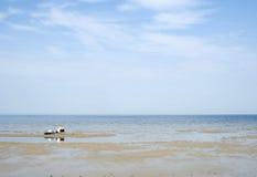 latvia Mattina in Jurmala sulla banca del golfo di Riga Fotografia Stock Libera da Diritti