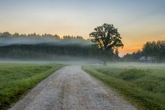 Old countryside road at dawn, Latvia, Europe. Latvia is a small nice European country where medieval history meets with marvelous scenic landscapes and clean Stock Photos