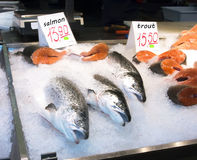 latvia Venta de salmones y de la trucha del mercado de Riga Imagenes de archivo