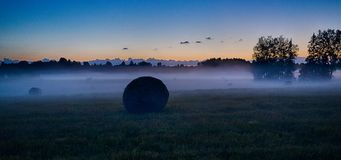 Evening fog in european field. Latvia vidzeme landscape at sunset with fog and mist Royalty Free Stock Images
