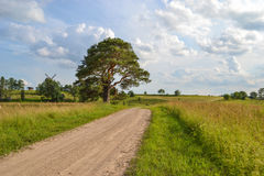 Latvian countryside Stock Photography