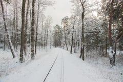 Latvian countryside rural landscape.Winter railway through snowy pines Royalty Free Stock Photos