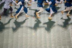 Latvian die Lied-und Tanz-Feier lizenzfreies stockbild