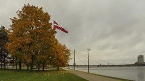 Latvian flag in autumn. Clear sky stock footage