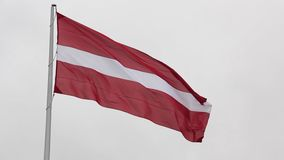 Latvian flag in autumn. Clear sky stock video footage