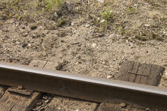 Latvian railroad in Gulbene. Royalty Free Stock Photos