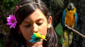 Latynoska dziewczyna Pozuje blisko papugi zbiory wideo