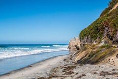 Laub auf Klippe an Leuchtfeuer ` s Strand in Encinitas, Kalifornien Lizenzfreie Stockfotografie