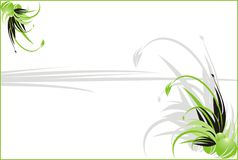 Laub. Dekorativer mit Blumenhintergrund für Karte lizenzfreie abbildung