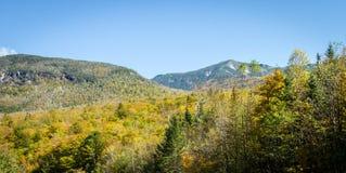 Laub in den weißen Bergen staatlicher Wald, New Hampshire, USA stockfotos