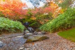 Laub im Wald mit Wasserfall und Fluss Lizenzfreies Stockbild