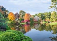 Laubvegetation über einem See im Herbst Lizenzfreies Stockbild