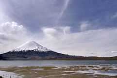 Lauca National Park. Chile Royalty Free Stock Photography